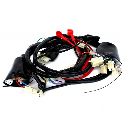 Wire Harness For 50cc 4