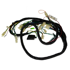 wire harness for taotao bws 150