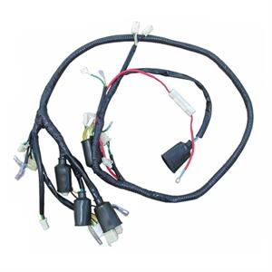 Main Wire Harness for ZNEN Vintage Scooters Nikko Safety Relay Wiring on
